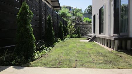 芝生 庭 施工事例